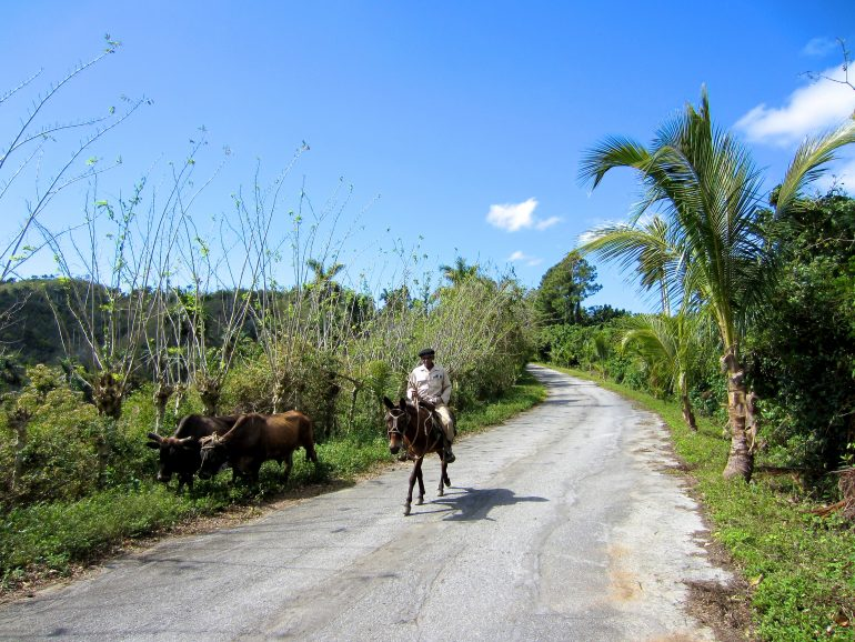 Cycling Cuba: Man on a donkey in the countryside