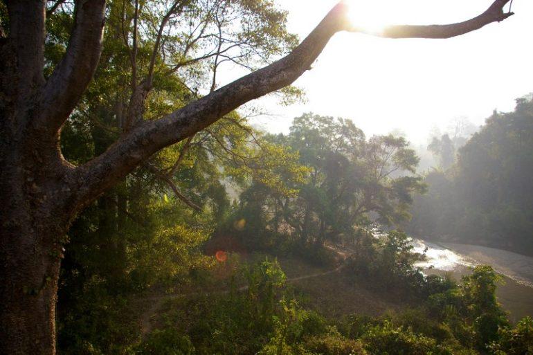 Myanmar: Blick in die Natur aus dem Zugfenster