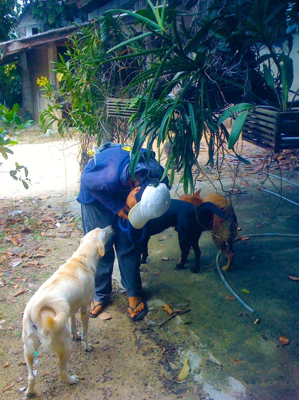 Phangan Animal Care: Chefin Por und ein kranker Hund
