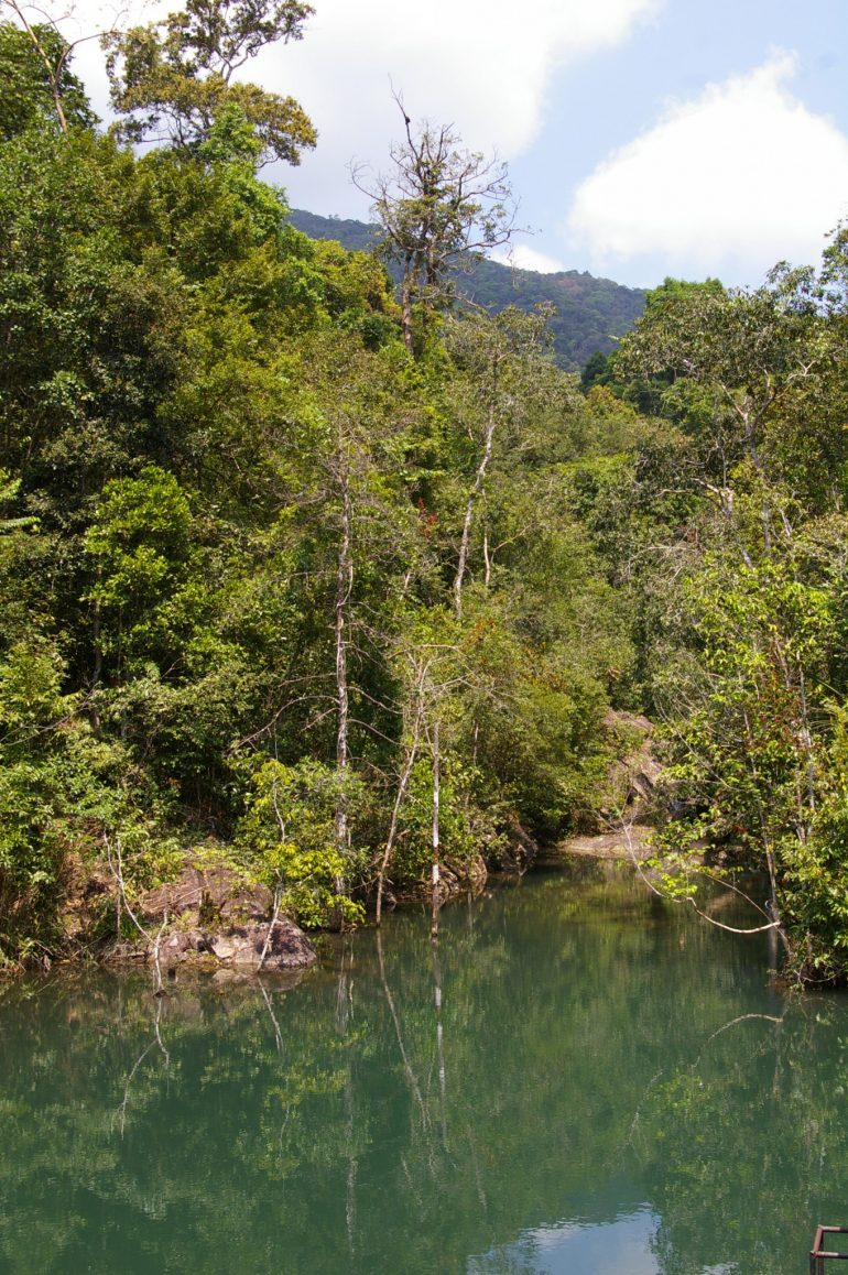 Khao Ra: The water reservoir with trees