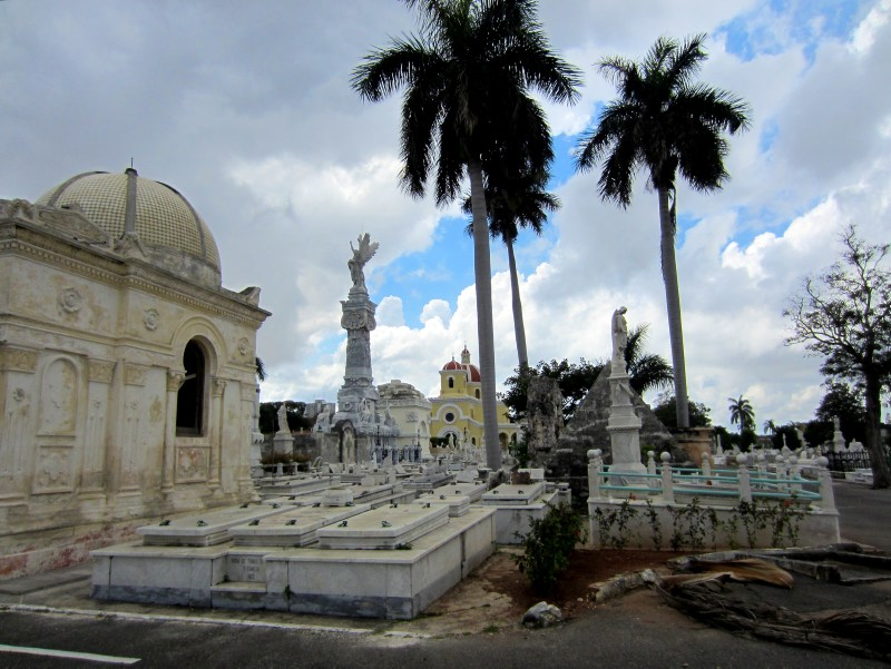 Cemetary with palm trees