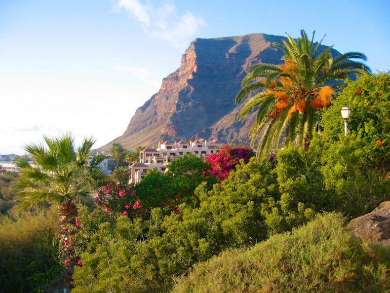Pflanzen und Hotels vor Bergen