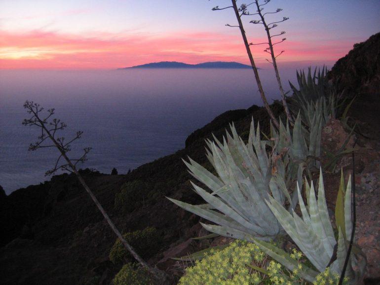 Gomera Highlights: Pflanzen und Berge im Sonnenuntergang