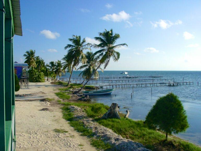 Palmen, Strand udn Meer in Caye Caulker