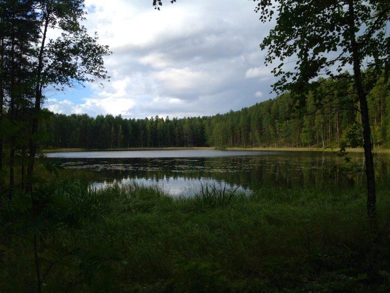 See und Wald in Finnland