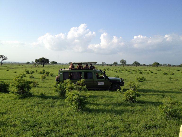 Teilnehmer einer Tansania Safari im Geländewagen