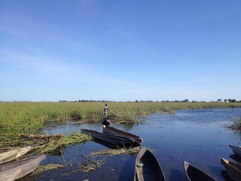 Poler auf einem Boot im Okavango-Delta