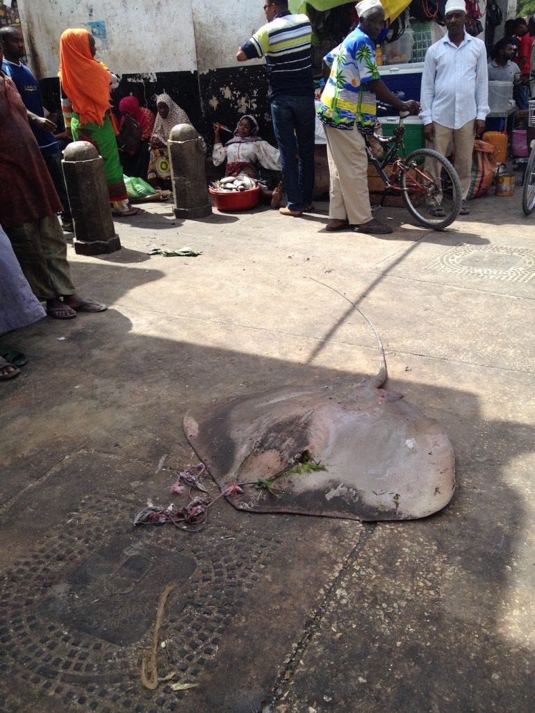 Toter Mantarochen auf einem Markt in Stone Town