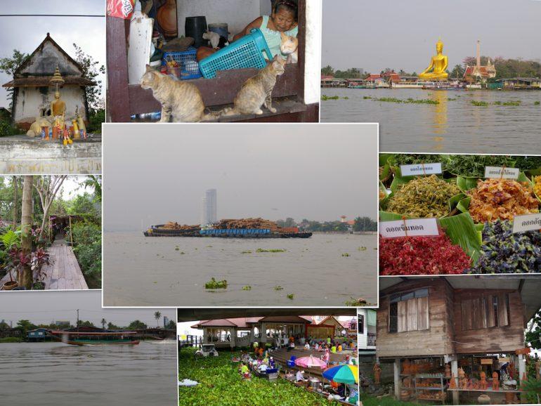 Bangkok Geheimtipps: Menschen, Tiere und Pflanzen auf Ko Kret