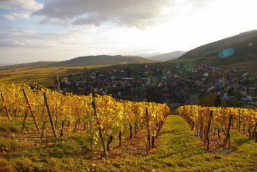 Road Trip: Das Elsass