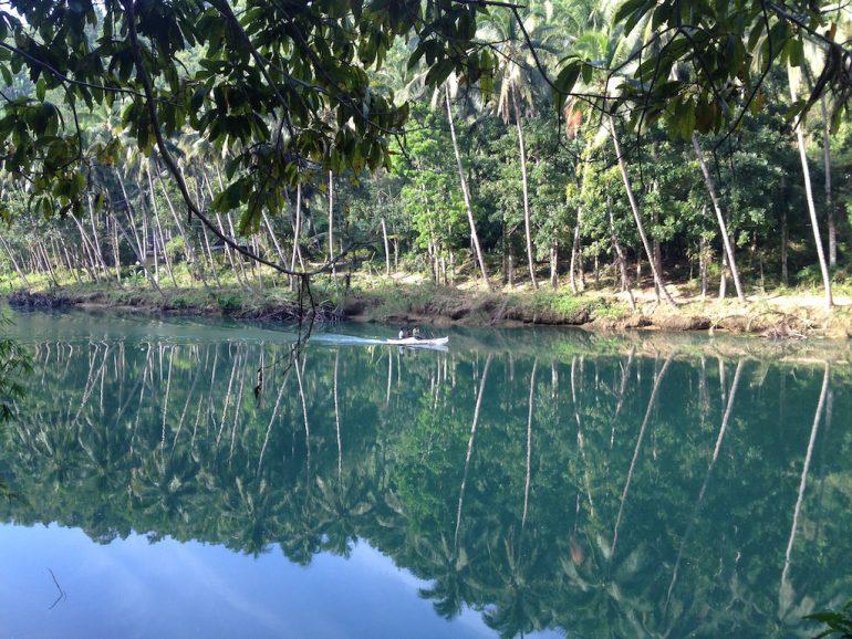 Schöne Fotos: Fluss und Palmen in Loboc, Bohol