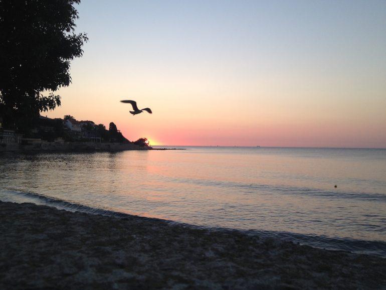 Road Trip Südosteuropa: Vogel über einem Strand im Sonnenaufgang in Bulgarien