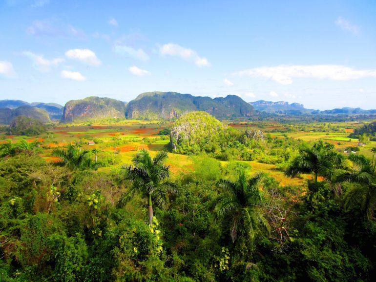 Schöne Fotos: Berge und Pflanzen in Viñales, Kuba