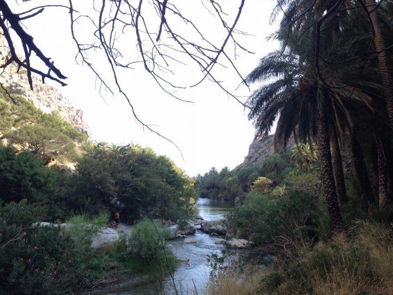 Kreta Highlights: Fluss mit Bäumen in Preveli