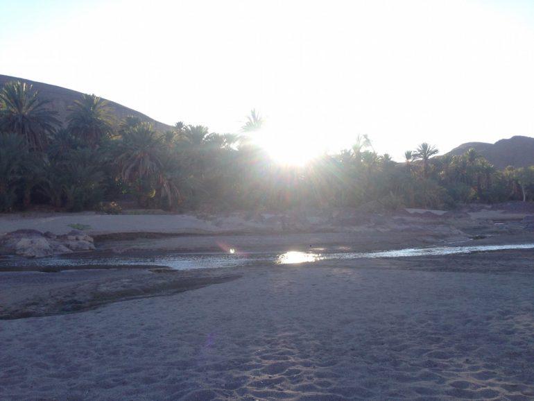Sonnenuntergang über einer Oase in Marokko