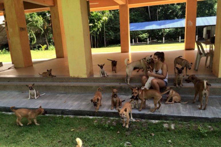 Frau mit Hundewelpen