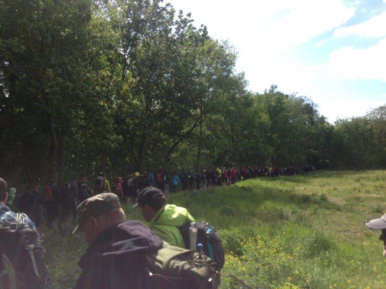 Teilnehmer des Mammutmarsch laufen entlang einer Wiese
