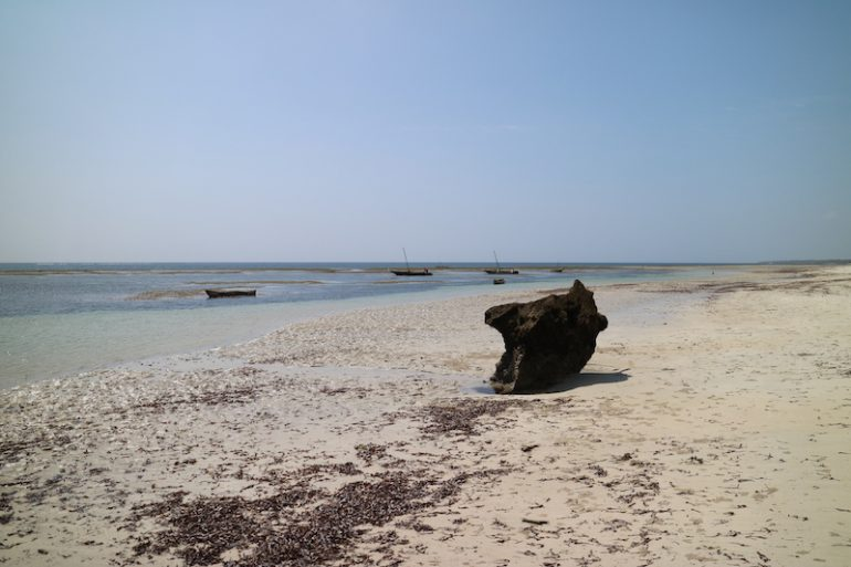 Alternative zu Diani Beach: Msambweni Beach
