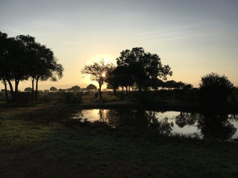 Kenia Strand: Sonnenaufgang im Tsavo east National Park
