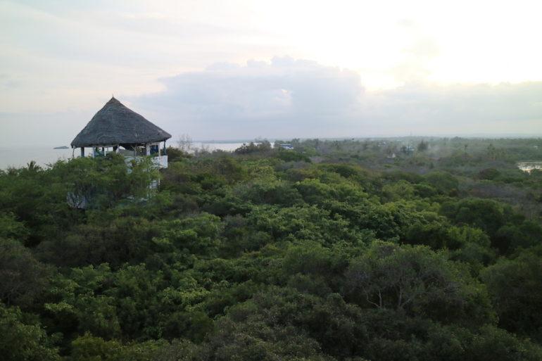 Kenia Strand: Watamu Tree House im Dschungel