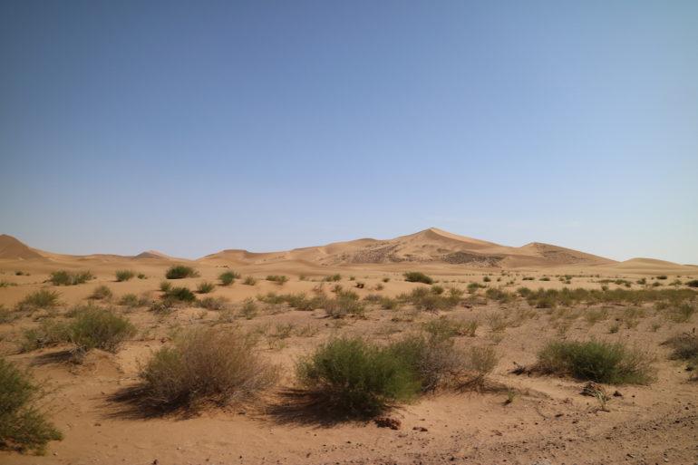 Innere Mongolei: Dünen in der Wüste Badain Jaran