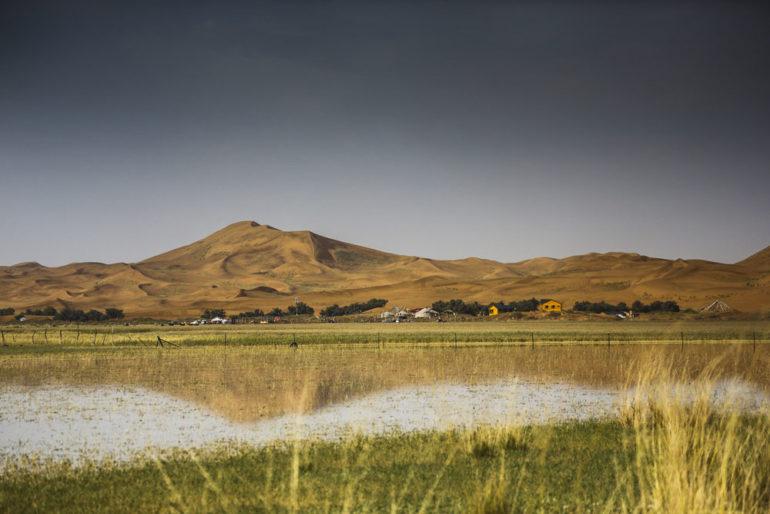 Dakar Rally in China: Dünen und Wasser in der Wüste Gobi