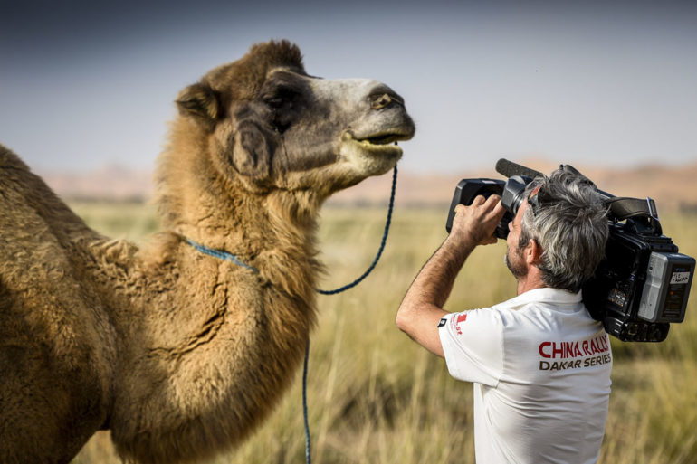 Dakar Rally in Cina: Kameramann mit Kamel in der Wüste Gobi