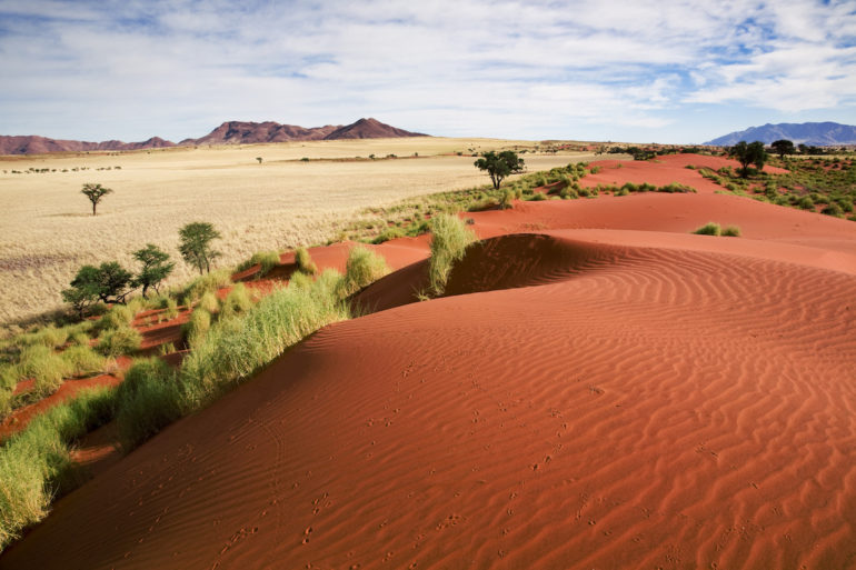 Adventures in Windhoek: Dunes in Wolwedans, Naukluft, Namibia.