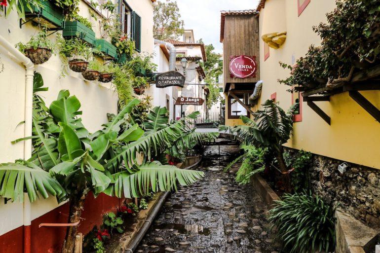 Madeira Sehenswürdigkeiten - Funchal Blick in Gasse