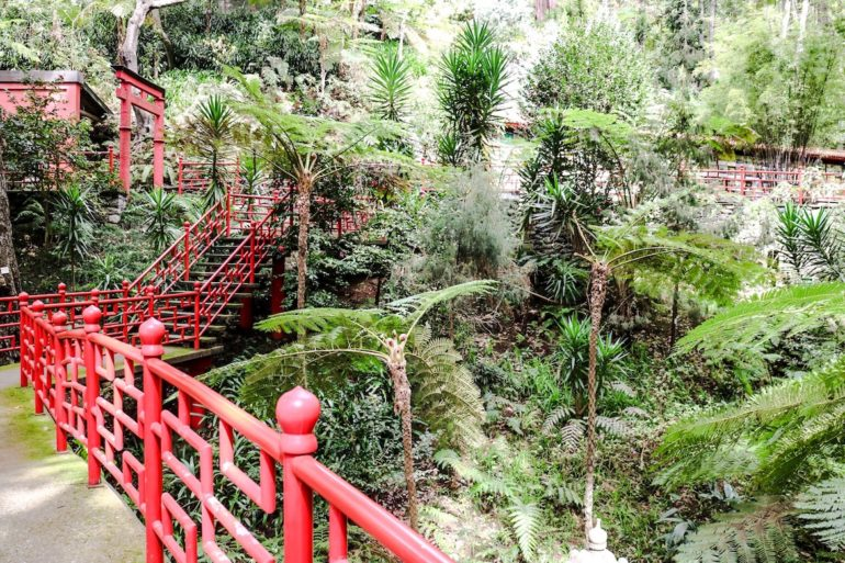Madeira Sehenswürdigkeiten - Jardim Botanico