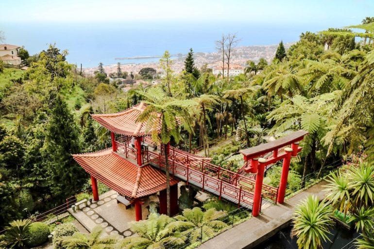 Madeira Sehenswürdigkeiten - Jardim Botanocio 4