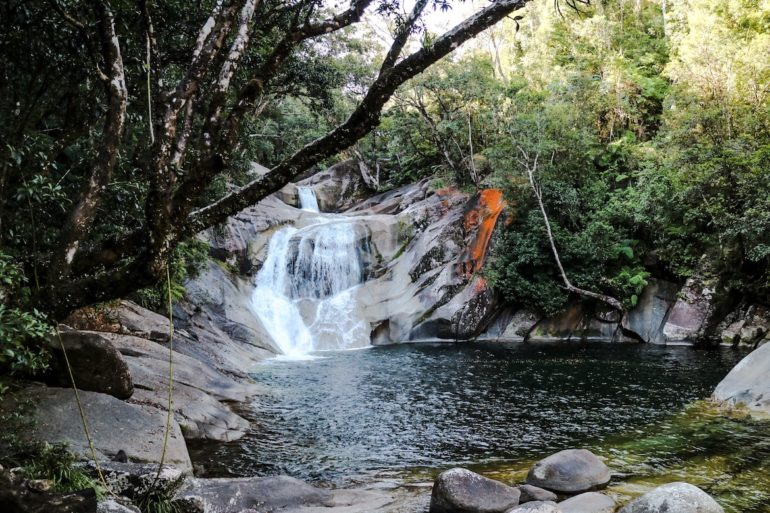 Great Barrier Reef: Wasserfall mit Bäumen in Josephine Falls