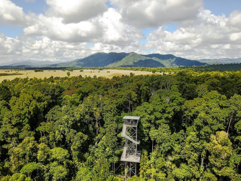 Great Barrier Reef: Aussichtsturm beim Mau Tropical Skywalk
