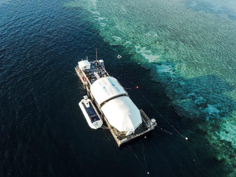 Whitsundays: Ponton im tiefen Wasser vor dem Great Barrier Reef