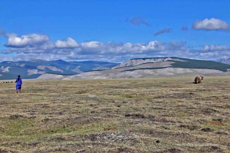 Unbekannte Reiseziele: Steppe in der Mongolei