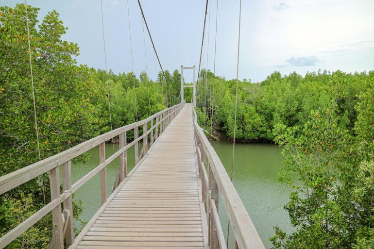 Hängebrücke im Mu Koh Chumphon National Park