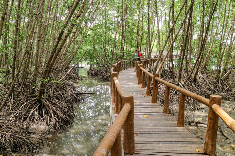 Stelzenpfad durch die mangroven im Mu Koh Chumphon National Park