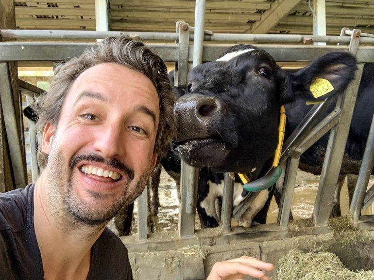 Emilia Romagna: Marco Buch mit Kuh in Modena