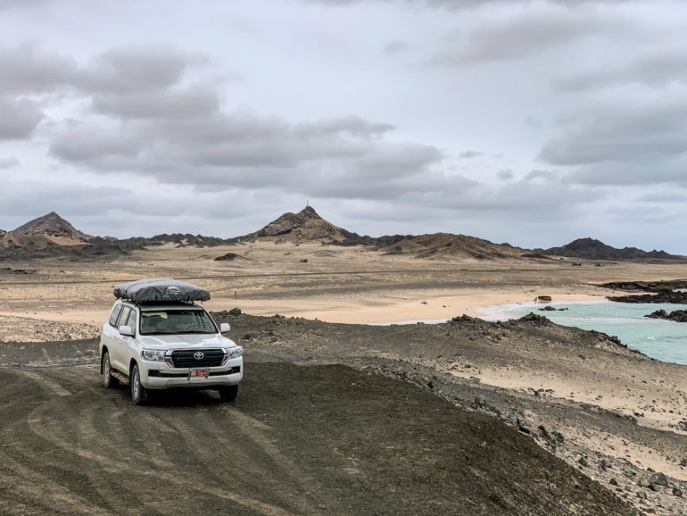 Geländewagen und Kamel auf einem Oman Roadtrip