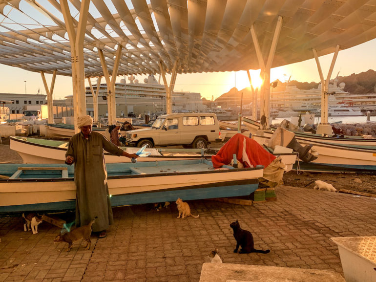 Mann und Katzen vor einem Boot auf dem Mutrah Fish Market