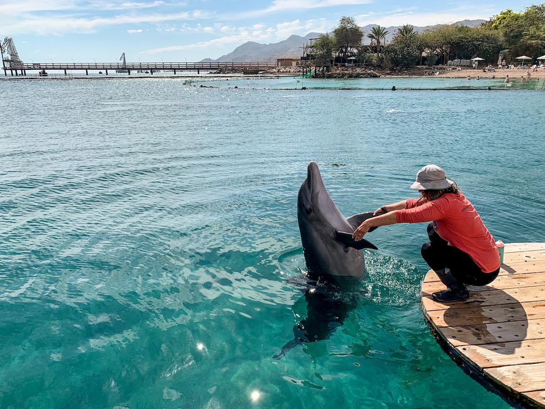 Frau mit Deflin im Dolphin Reef Eilat